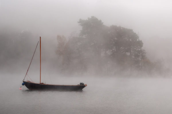 Misty Day, Kenmore